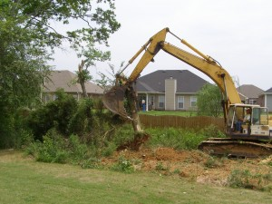 Track hoe removing trees